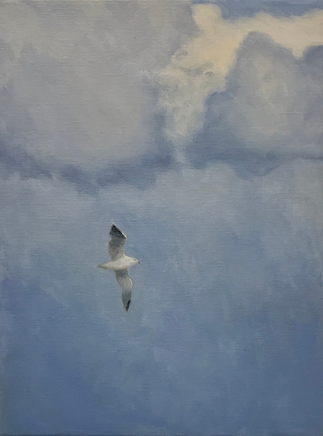 'Seagull', 30x40 cm, oil (sold)