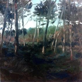 'Sunset Path' - 25x25, oil